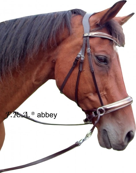 Bitless Bridle - Abbey