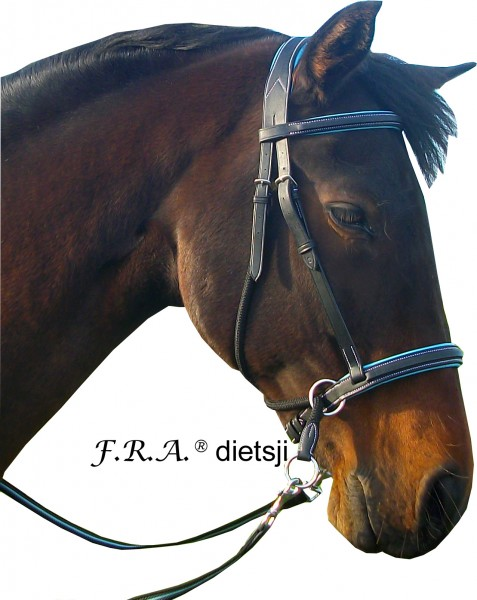 Bitless Bridle - Dietsji - Shire