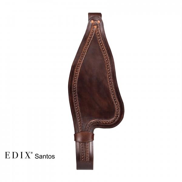 Fender Santos