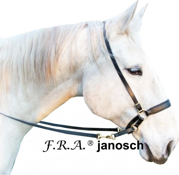Bitless Bridle - Janosch