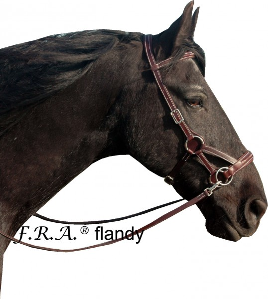 Sidepull - Flandy