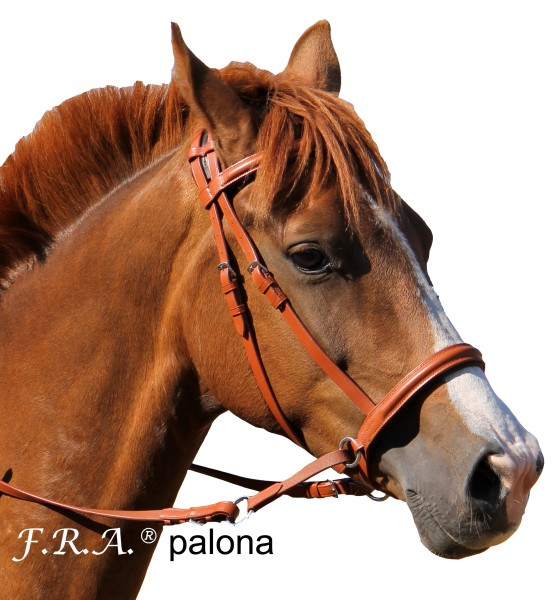 Bitless Bridle - Palona