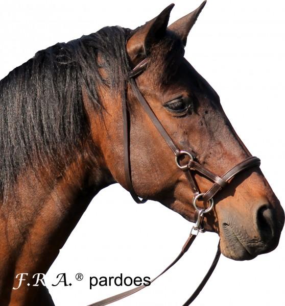 Sidepull - Pardoes
