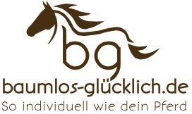 bg_Logo_Claim_RZ_klein57f4b4cf579cc